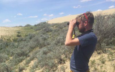 D'intrépides atlasseurs récoltent une masse de données sur les oiseaux nicheurs en Saskatchewan