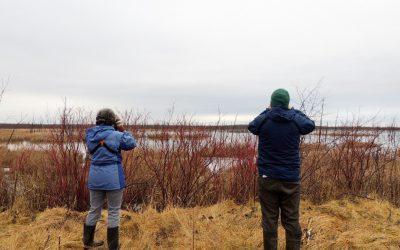 Une transition qui aidera à établir les priorités en matière de conservation