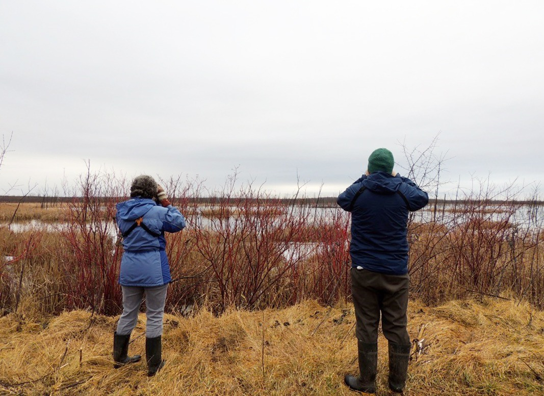 Volunteer Citizen Scientists counting birds at an Important Bird Area.